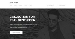30+ Inspirational ECommerce Website Designs