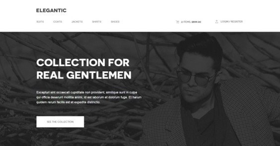 30  Inspirational ECommerce Website Designs