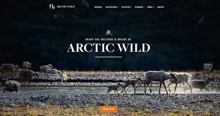 Arctic Wild Nature Site