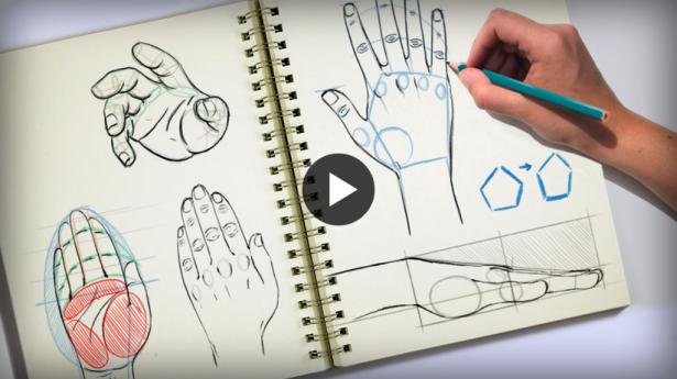 draw-human-hand