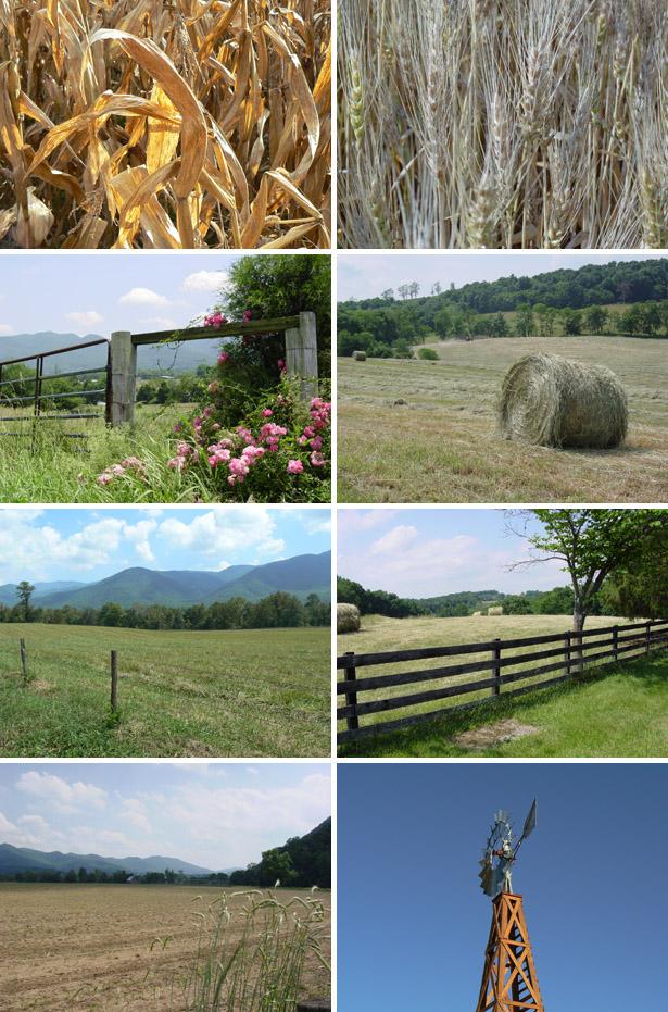 Farmlands Stock Photo Set