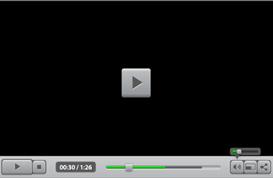 Vector Media Player Skin