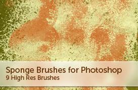 Sponge Brushes – Part II